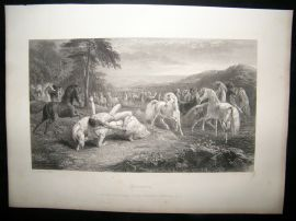 After John Frederick Herring C1860 Steel Engraving, Mazeppa, Horse Print